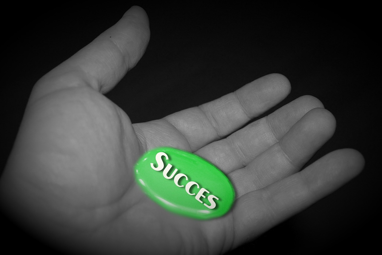 Use the online t4 accelerator program to accomplish success